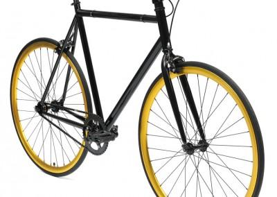BLACK-GOLD-1