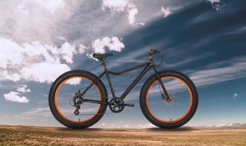 cheetah-fat-bike-banner-2
